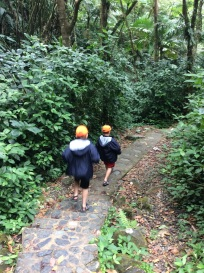 R&R, El Yunque Rain Forest, Puerto Rico