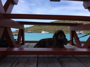 Patton, Fat Virgin, Biras Creek, Vigin Gorda, BVI