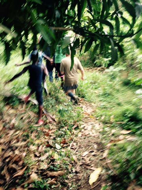 Grenada Hash hike - some people ran