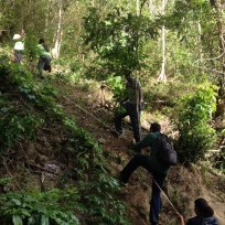 Grenada Hash hike - the rope obstacle