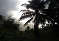Grenada hike