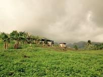 Grenada countryside