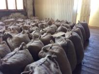 Burlap Sacks Ready for Export