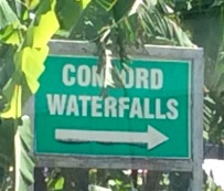 Concord Waterfalls