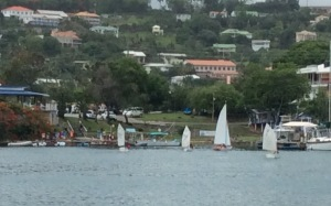 GYC Sailing Camp Boats