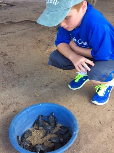 Ronan, Levera Bay, Leatherback turtles