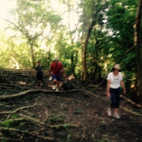 Hash Hike