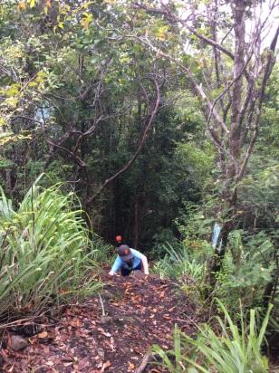 (Ronan) Steep Hike Behind Rain Forest Café, Marigot Bay, St. Lucia