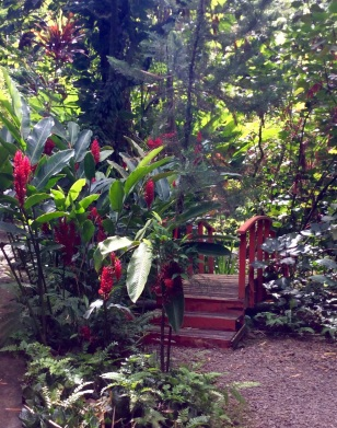 St. Lucia Botanical Gardens