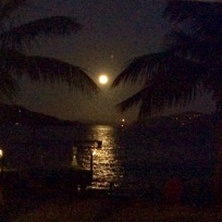 Full Moon Part at Foxy's Taboo, Jost Van Dyke, BVI