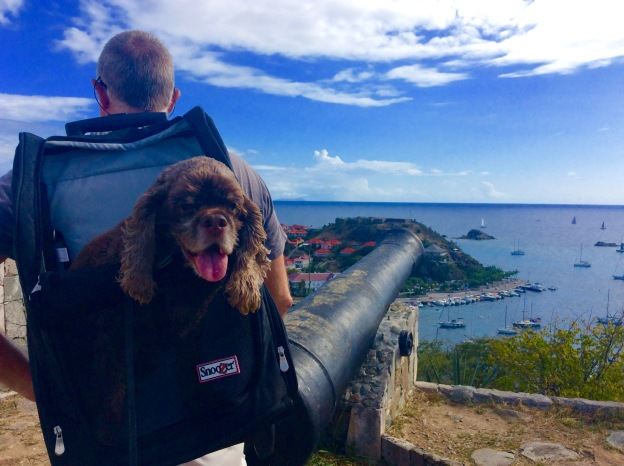 Patton enjoying touring the fort, Gustavia, St. Bart