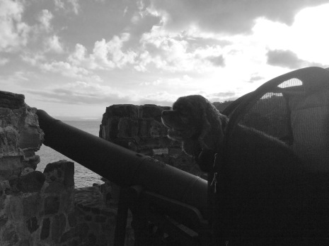 Patton taking in the view from his jet pack perch at Fort Berkely, Antigua