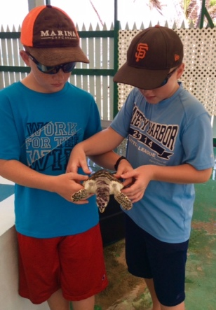 Ryan and Ronan holding the endangered Hawksbill turtle at the turtle sanctuary in Bequia