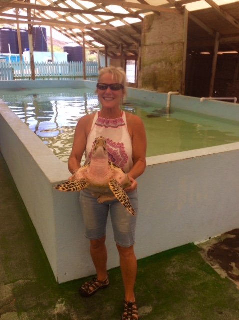 Theresa holding a Hawksbill turtle at the turtle sanctuary in Bequia