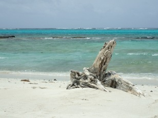 Baradal Island beach looking out towards the reef, Tobago Cays