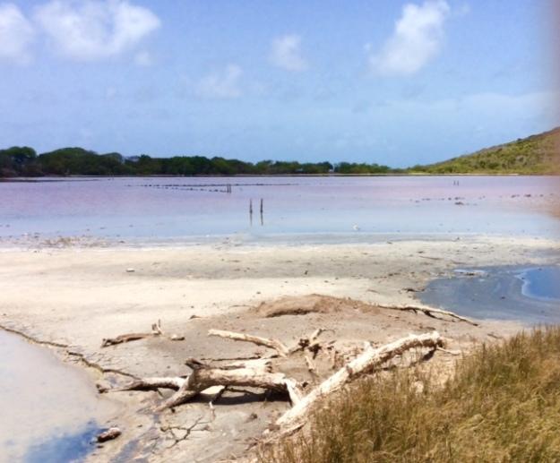 Salt Ponds, Mayreau