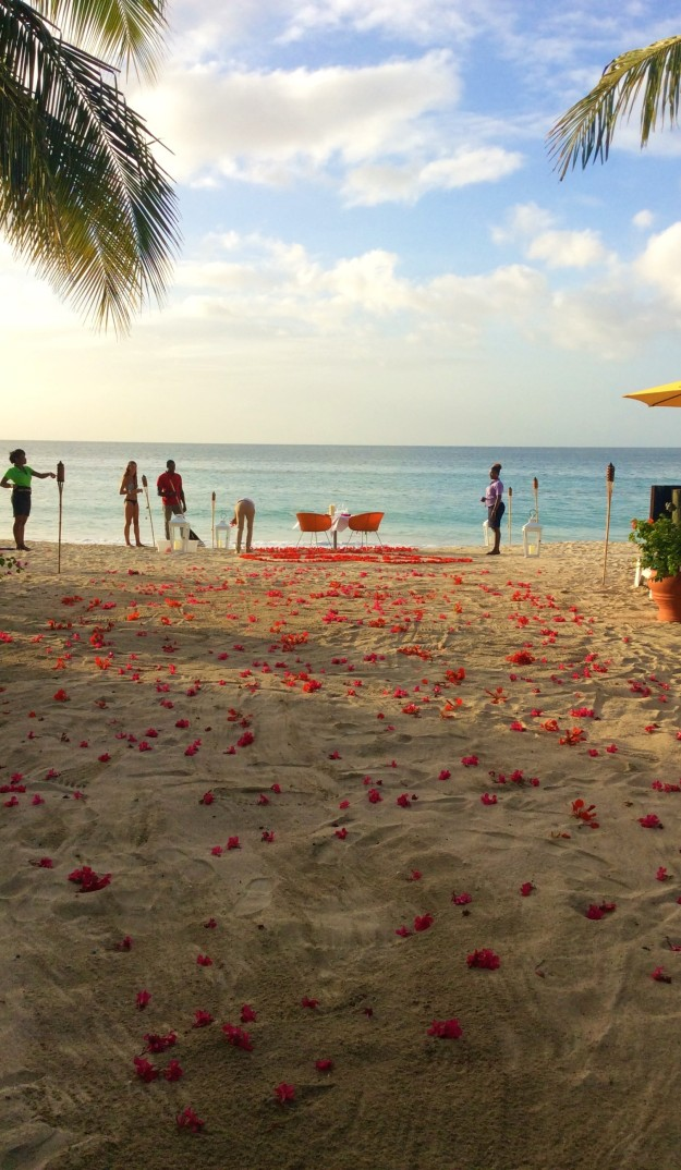 The Mount Cinnamon Resort team preparing the flower pedal walkway to the anniversary dinner at Savvy, private beachside-waterfront-sunset, dinner for two, St. George's, Grenada