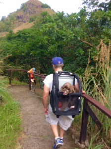 Patton and James, hiking Fort Rodney, St. Lucia