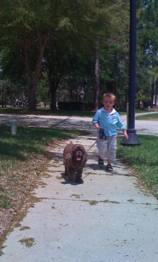 Ronan walking Patton