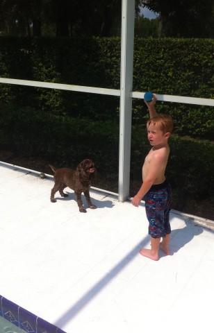 Ronan and Patton playing ball