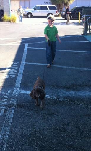 Ryan walking Patton