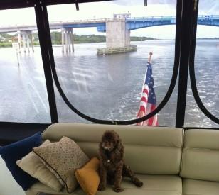 Patton on the bridge