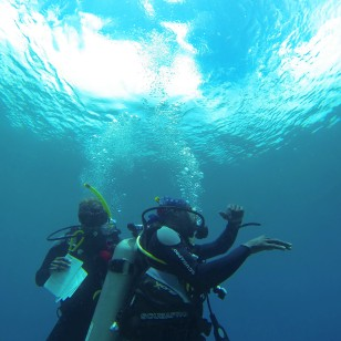 Mary & Dwight, safety stop, diving in St. Lucia