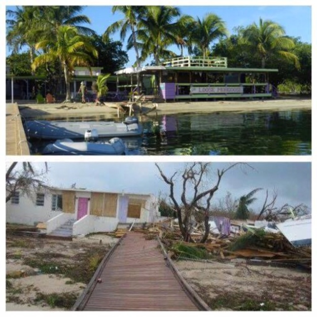 DeLoose Mongoose, Trellis Bay, BVI (Before and After)