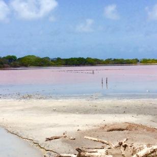 Salt ponds in Mayreau