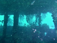 Bridge of the Lesleen M Wreck in St. Lucia (Jan. 2018)