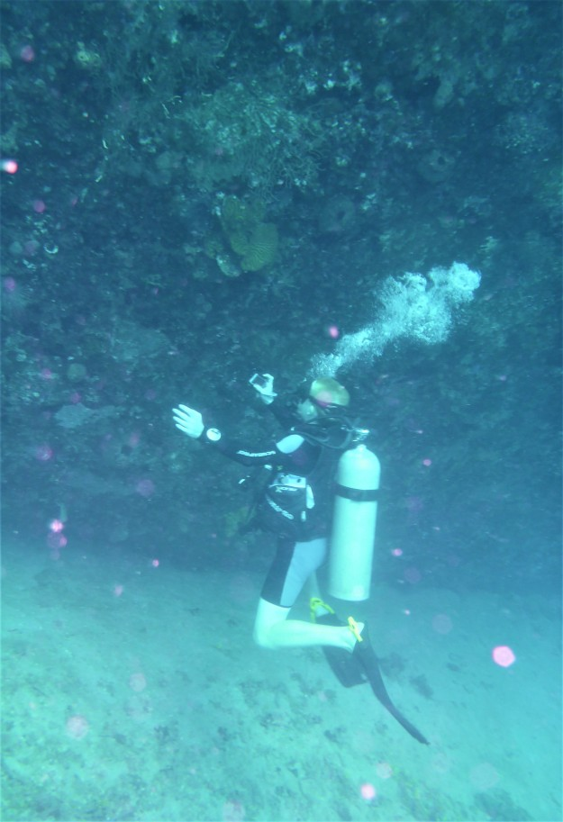 Ryan photographing the Lesleen M Wreck in St. Lucia (Jan. 2018)
