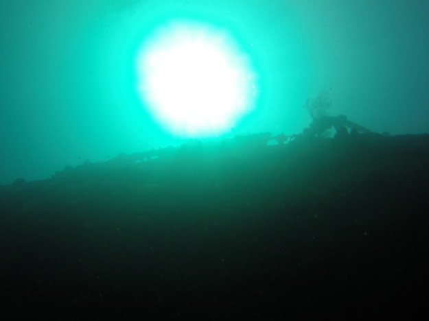 Lesleen M Wreck in St. Lucia - 65 ft below sea level looking up (Jan. 2018)