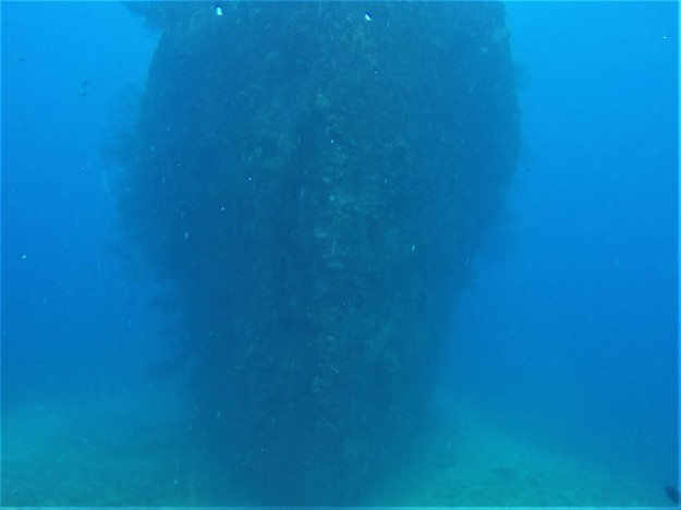 Lesleen M Wreck in St. Lucia - 65 ft below sea level - looking towards the bow (Jan. 2018)