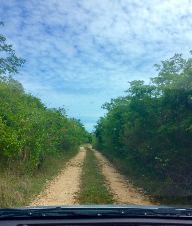 Dirt road to the Christopher Columbus monument, Long Island, Bahamas